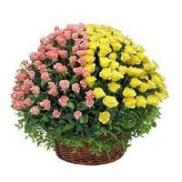 Same Day Delivery Flower to India
