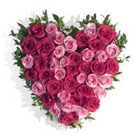 Pink Red Roses Heart 50 Flowers to India having Valentine's Day Flowers to Delhi