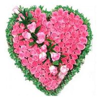 Valenine's Day Flowers Delivery in India