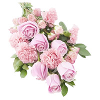 Best Rakhi Flower Delivery in India with Pink Rose Carnation Bouquet 12 Flowers to India