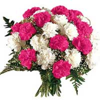 Order Pink White Carnation Bouquet 12 Flowers to Hyderabad on Rakhi