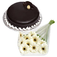Deliver Online 12 White Gerbera 1 Kg Chocolate Truffle Cakes to India on Rakhi