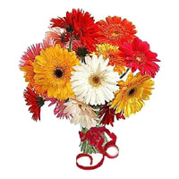 Best Rakhi Gifts for Sister is Mixed Gerbera Bouquet 12 Flowers in India