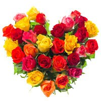 Deliver Valentine's Day Flowers in India : Flowers to India