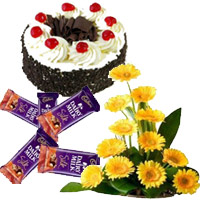 Best Arrangement of 12 yellow Gerbera with 5 Dairy Milk Silk(60 gm. each) and 1 kg Black Forest Diwali Cake in India Online