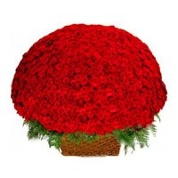 Valentine's Dy Flower Delivery in India