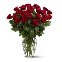 Rose Day Flowers to India : Send Flowers to India