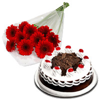 Deliver 12 Red Gerbera with 1/2 Kg Black Forest Cake to India. Rakhi Flowers to India