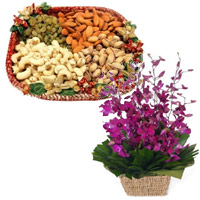 Send 10 Purple Orchids Basket with 1/2 Kg Assorted Rakhi Gifts in India