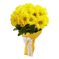 Rakhi with Yellow Gerbera Bouquet 15 Flowers Delivery in India