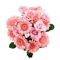 Buy Rakhi with Online 18 Pink Gerbera Roses Bouquet Flowers to India