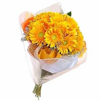 Get 12 Yellow Gerbera Bouquet. Online Rakhi Flowers Delivery in India