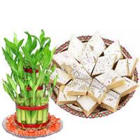 Deliver Rakhi Gifts in Hyderabad
