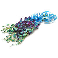 Deliver Blue Orchid Bunch of 5 Stem Rakhi India Flowers
