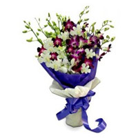 Deliver Rakhi with Purple White Orchid Bunch 10 Flowers to India with Stem