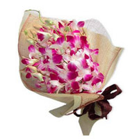 Pink Orchid Bunch 12 Flowers Stem. Same Day Rakhi Flowers Delivery to India
